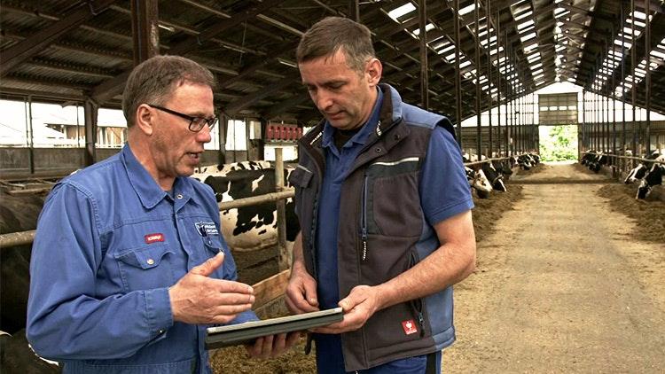 Nachhaltig gesunde Kühe durch All-Inclusive-Pflegepaket