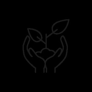 Icon für Wachstum